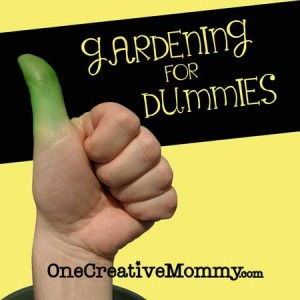 Gardening for Dummies--Funny Tips That Every New Gardener Should Know